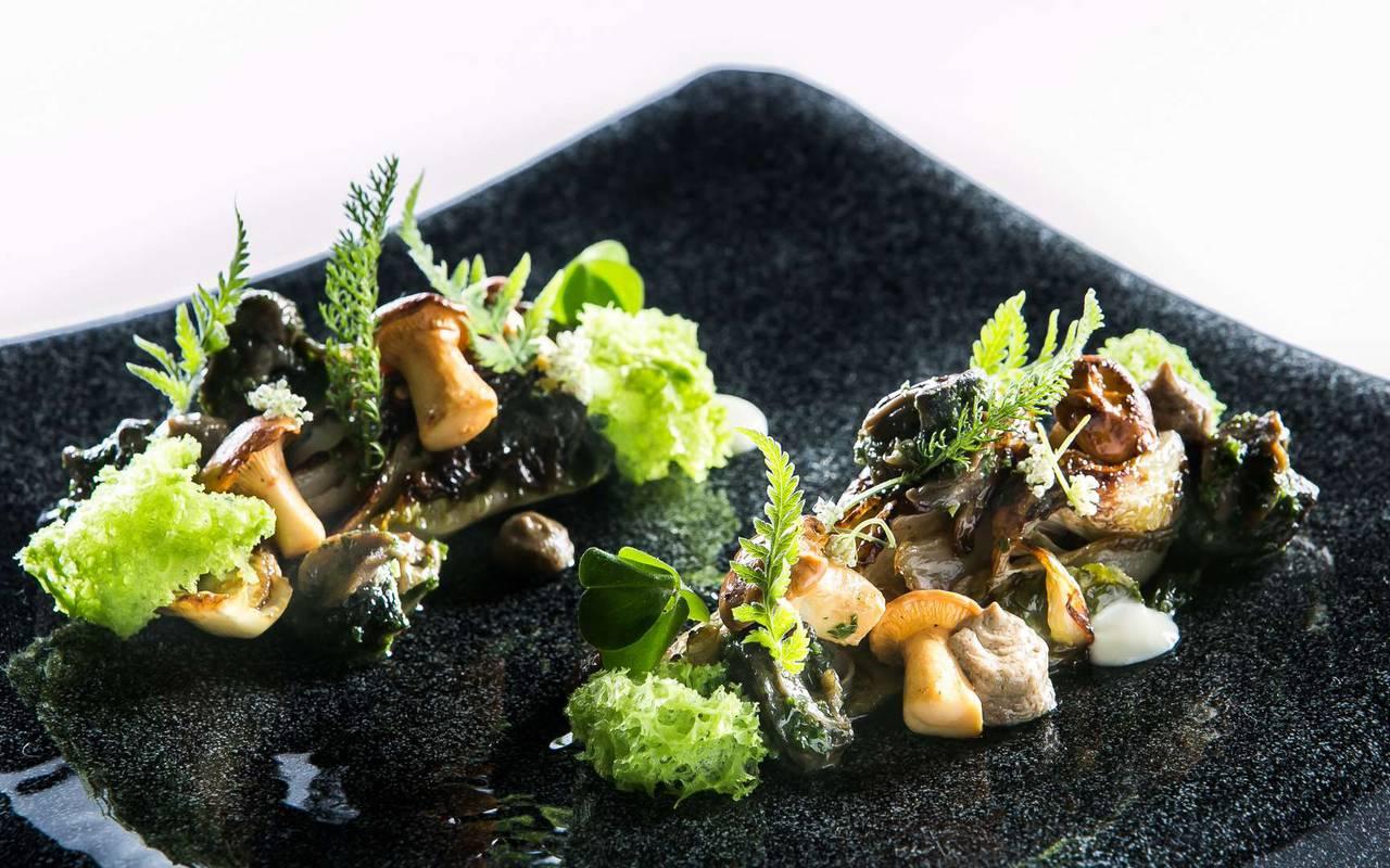 Gourmet dish of restaurant Hotel spa Dijon